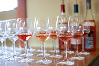 Rose Today Wine Competition Finals032317003